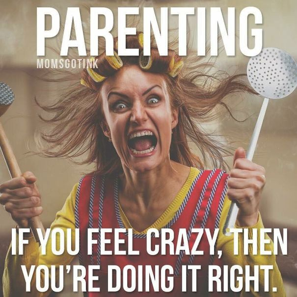 10+ Parenting Memes That Will Make You Laugh So Hard It ...