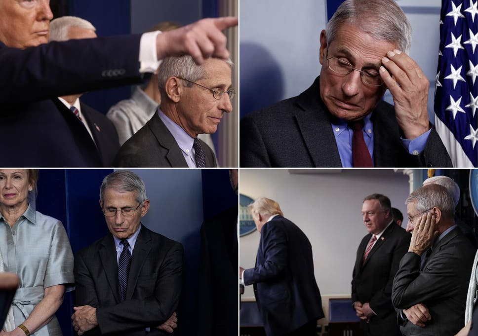 PRESIDENT TESTS POSITIVE FOR FAUCI ENVY | I'm Mad Too, Harry.