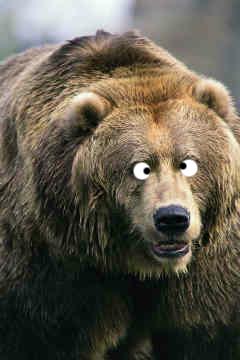 The Cross-Eyed Bear | Steve McCutchen's Cavalcade of Awesomeness