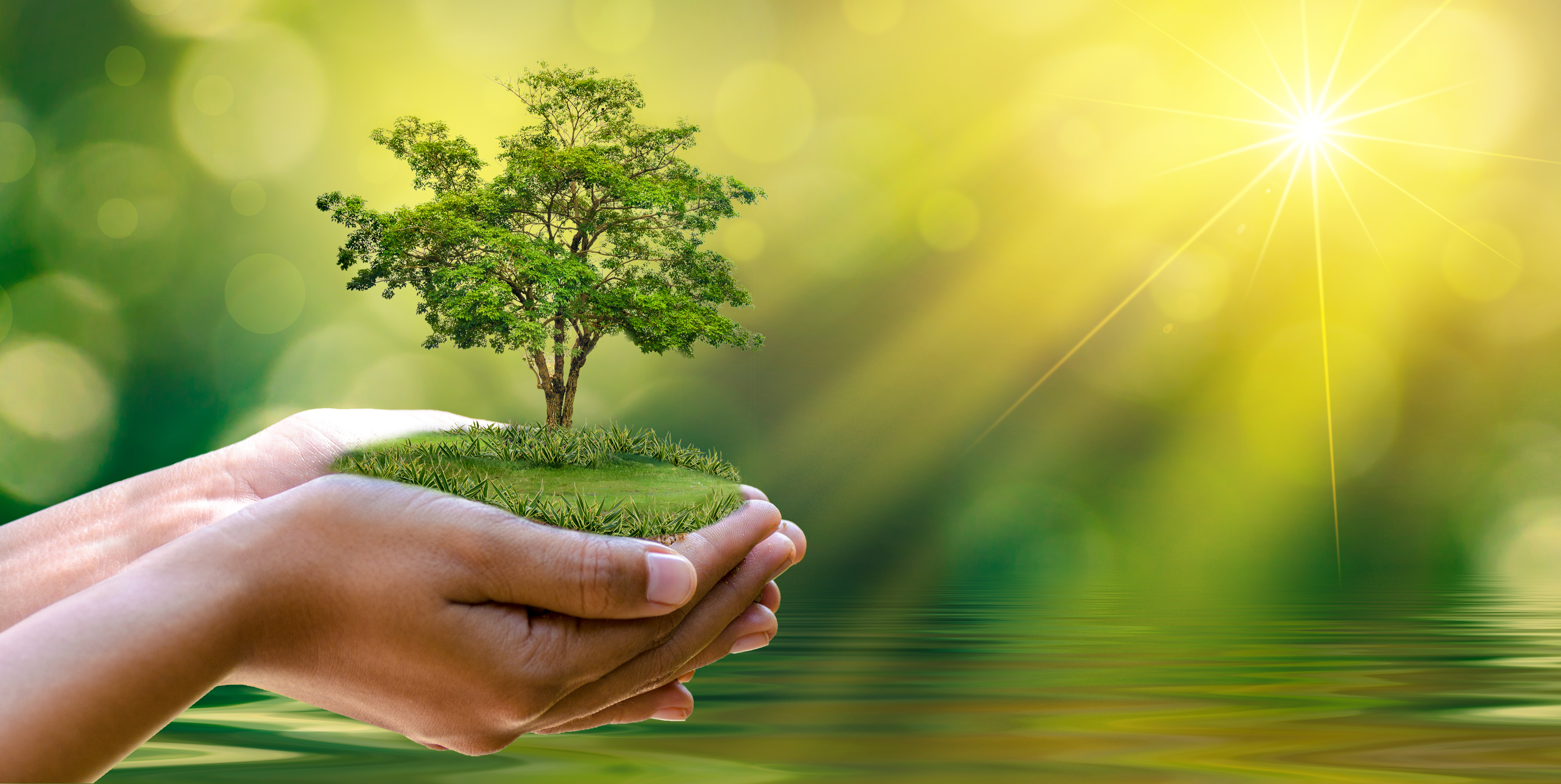 Honoring Earth Day Through Manufacturing - Telamco