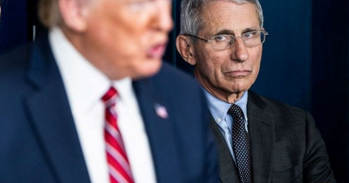 Trump Figured Out Fauci and Now He's GONE | The Black Sphere