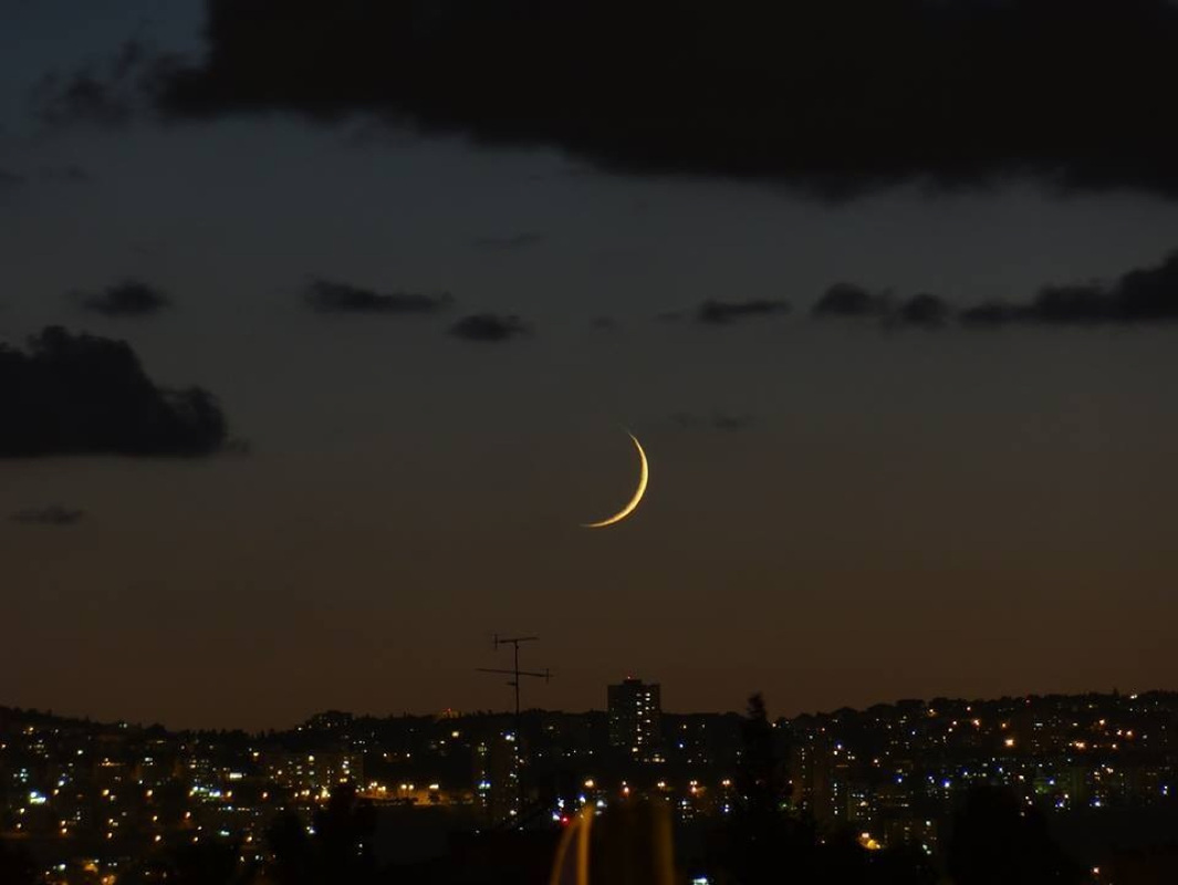 Shalom, New Moon over Israel - Saturday December 8, 2018 - The Blogging Hounds
