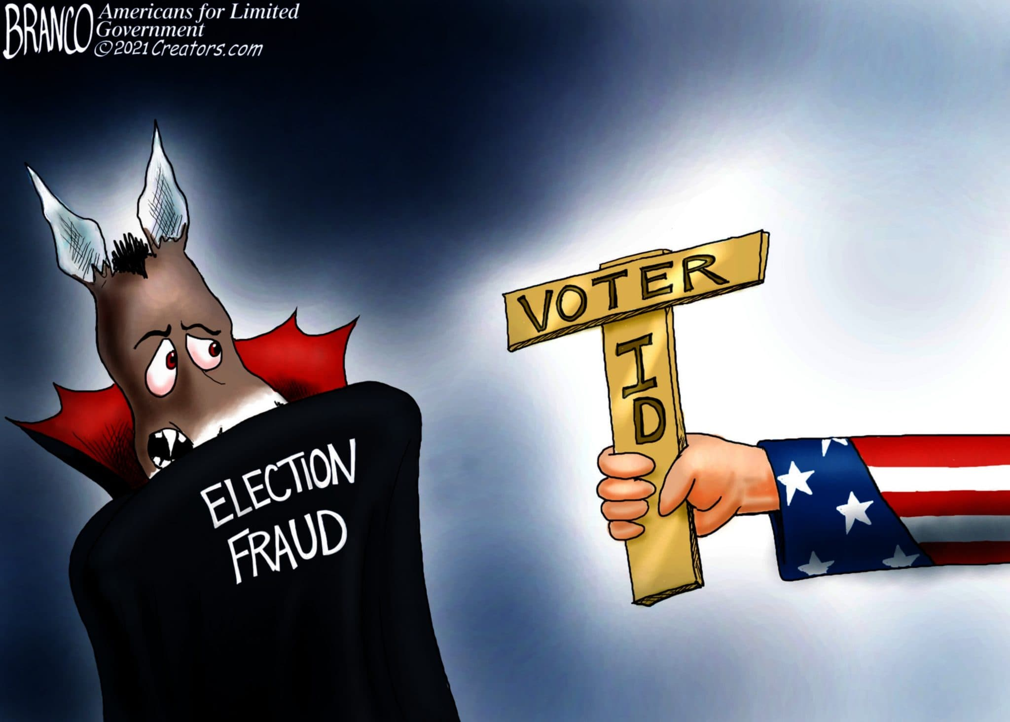Democrats Terrified at Thought of Voter ID   The Liberty Loft