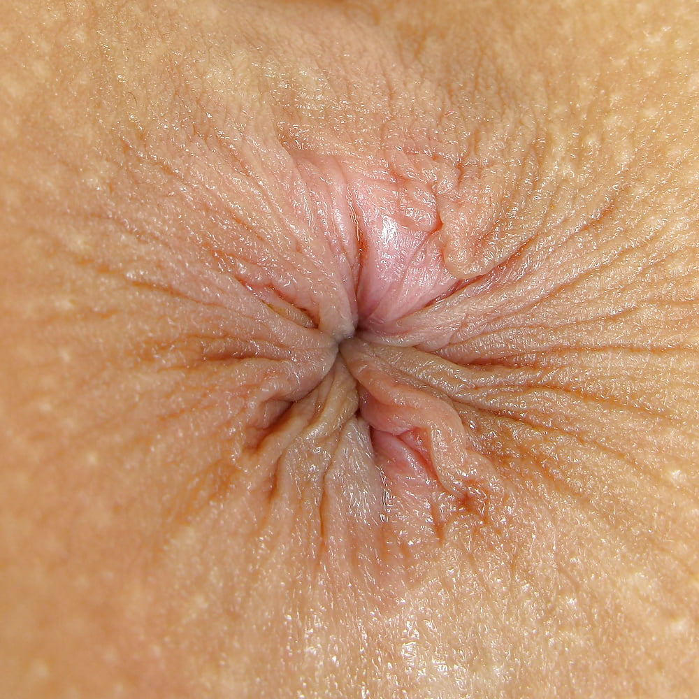 Anus Close Up Compilation - 40 Pics | xHamster