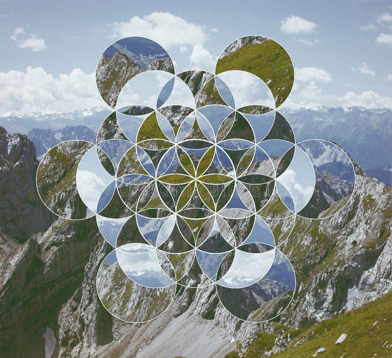 Flower Life Sacred Geometry Stock Images - Download 167 ...