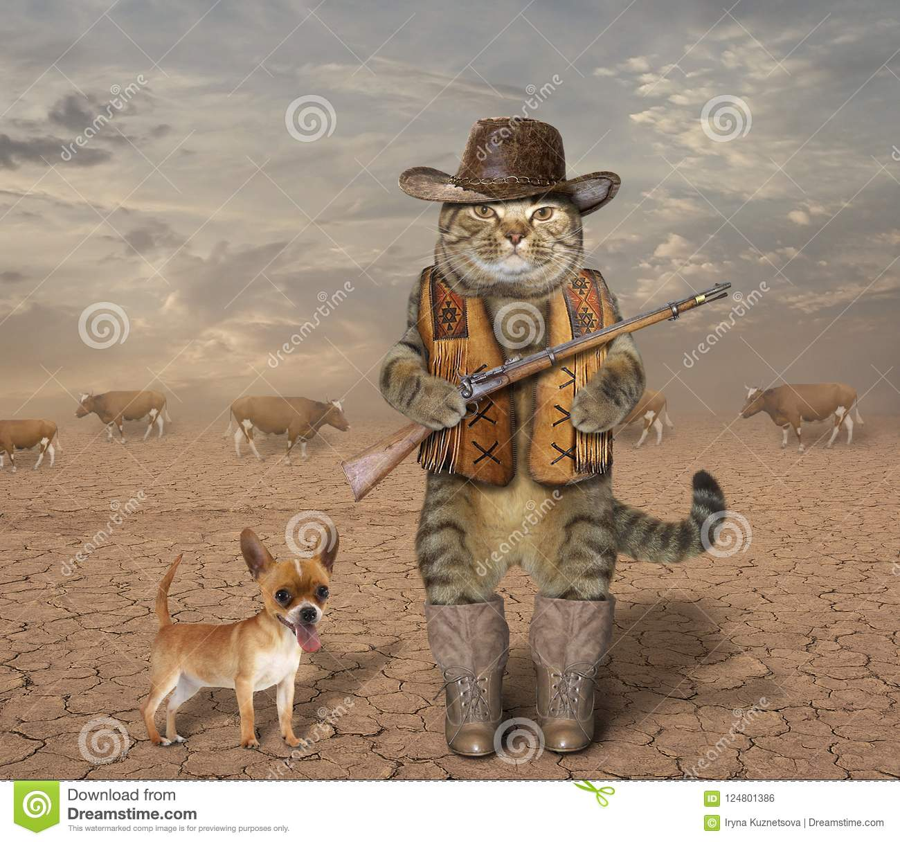 Cat cowboy with dog 1 stock photo. Image of outfit, desert ...