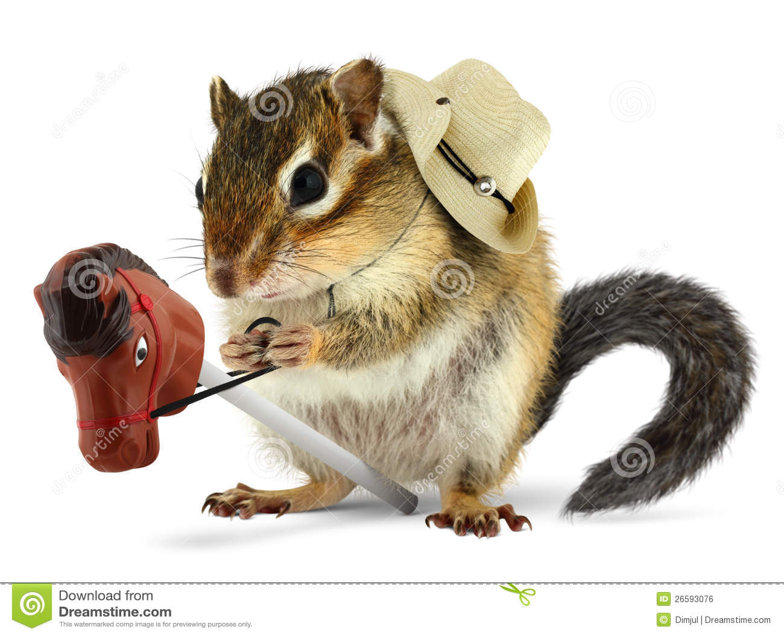 Funny Chipmunk Cowboy Royalty Free Stock Image - Image ...