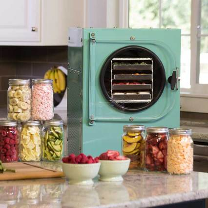 preserve food dryers