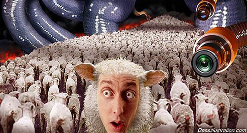 | Are you a Sheeple? Take the Quiz and find out … | | truthaholics
