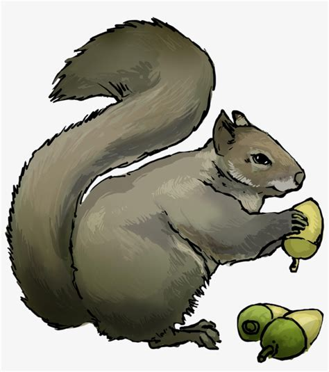 Library of squirrel free public domain png files Clipart ...