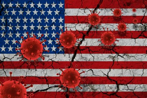 COVID-19 Is Officially a Pandemic: How Will the U.S ...