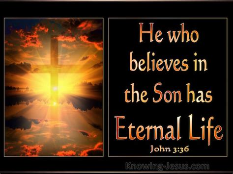"John 3:36 ""He who believes in the Son has eternal life ..."
