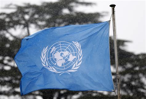 Is the UN a friend or foe?