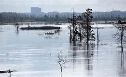 Over Flo: Florence caused slew of sewage spills - News ...