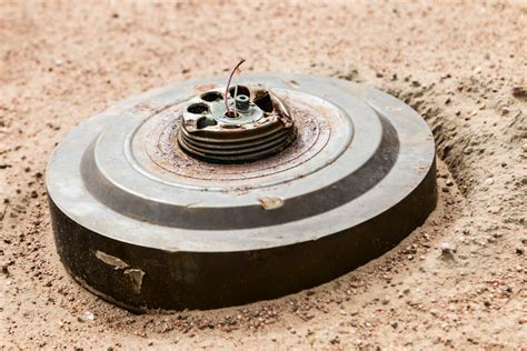 Explosive Nostalgia: Florida Woman's WWII Land Mine Find ...