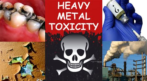 TOXIC HEAVY METALS PLAYING INCREASING ROLE IN CHRONIC ...