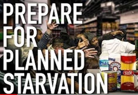 Planned Starvation And Food Shortage Coming As Food Prices ...