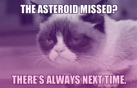 "The 25 Funniest ""Earth Killer"" Asteroid Memes 