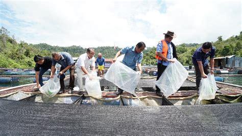 Ternakan udang galah pertama di Sarawak
