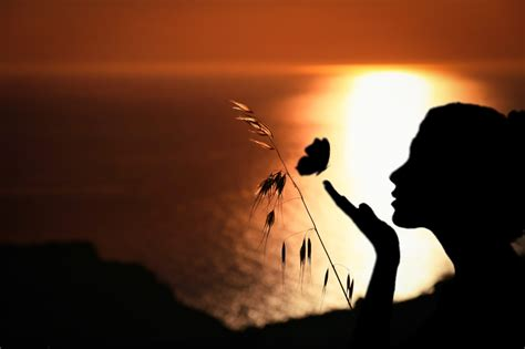 Free Images : woman, butterfly, romantic, panoramic ...