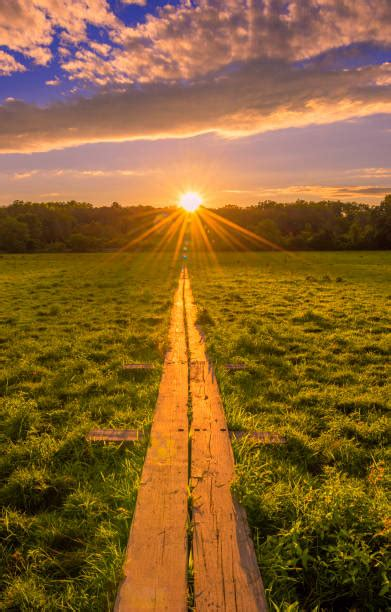Stairway To Heaven Stock Photos, Pictures & Royalty-Free ...