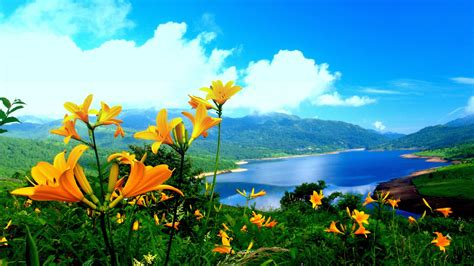 Beautiful Nature Wallpapers | HD Wallpapers , HD ...