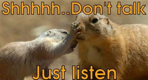 Shhh----Don--t-Say-A-Thing--Just-Listen--Don--t-Talk.jpg (500×273) | The beauty and danger of ...