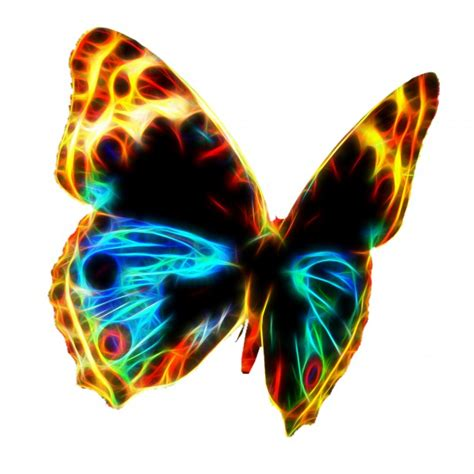 Fractal Wire Flame Butterfly Free Stock Photo - Public ...