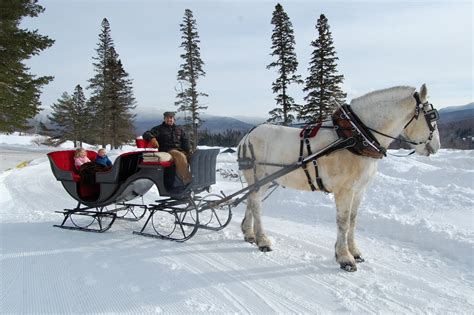 Outdoor Mom: A Classic Winter's Sleigh Ride