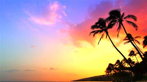 4k Incredible Sunset, Tropical Beach, Stock Footage Video ...