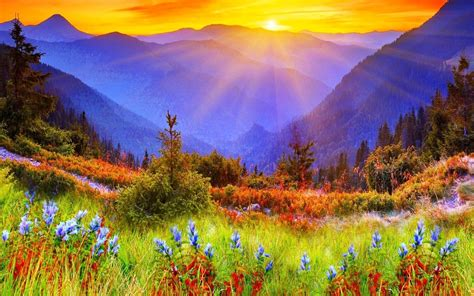 Spectacular Mountain Beautiful - Nature Sun Rise ...