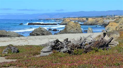 Beach at Ft. Bragg in California 6   pjpink   Flickr
