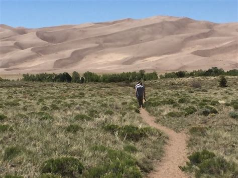 Nice - Picture of High Dune Trail, Great Sand Dunes ...