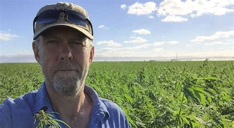Aussie hemp farmer increases yield by 140% in a few years ...