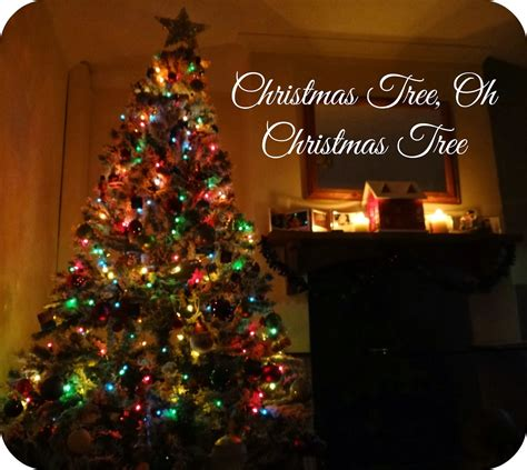 Life Unexpected: Christmas Tree, Oh Christmas Tree
