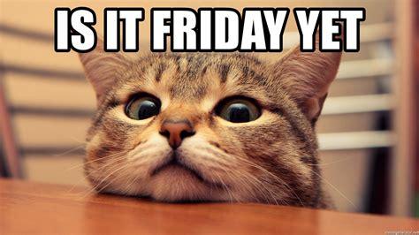 IS IT FRIDAY YET - Frantic Cat | Meme Generator