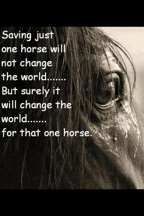 Change one life for that horse