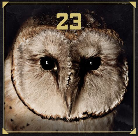 23 on Spotify