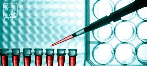 Bangkok R.I.A. Group - Polymerase Chain Reaction (PCR)