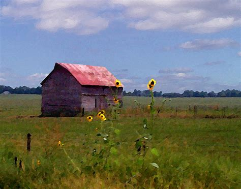Kansas Landscape by Steve Karol