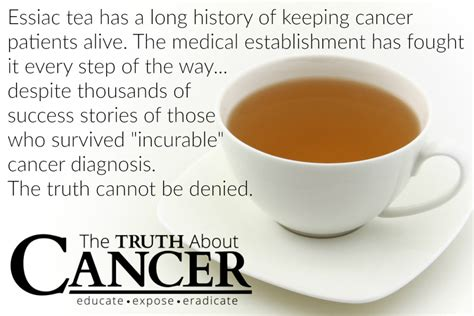 Why Essiac Tea Should be Part of Your Cancer Fighting ...