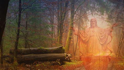 Kostenlose foto : Jesus, Anmut, Liebe, Natur, Holz, Gebet ...