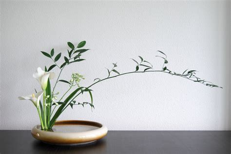 How to decorate a house with the help of ikebana ...