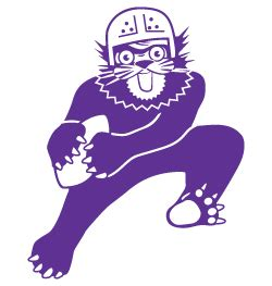 Throwback Northwestern Wildcats | Throwback Clothing