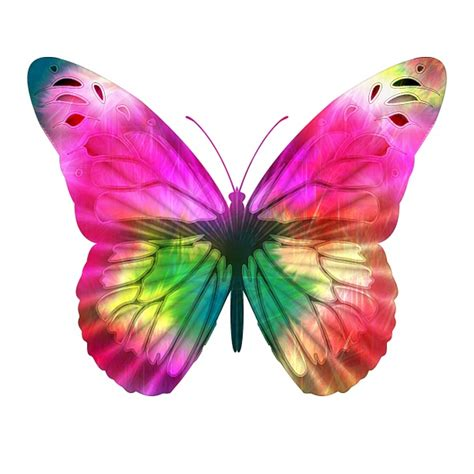 Bright Pink Butterfly Free Stock Photo - Public Domain ...