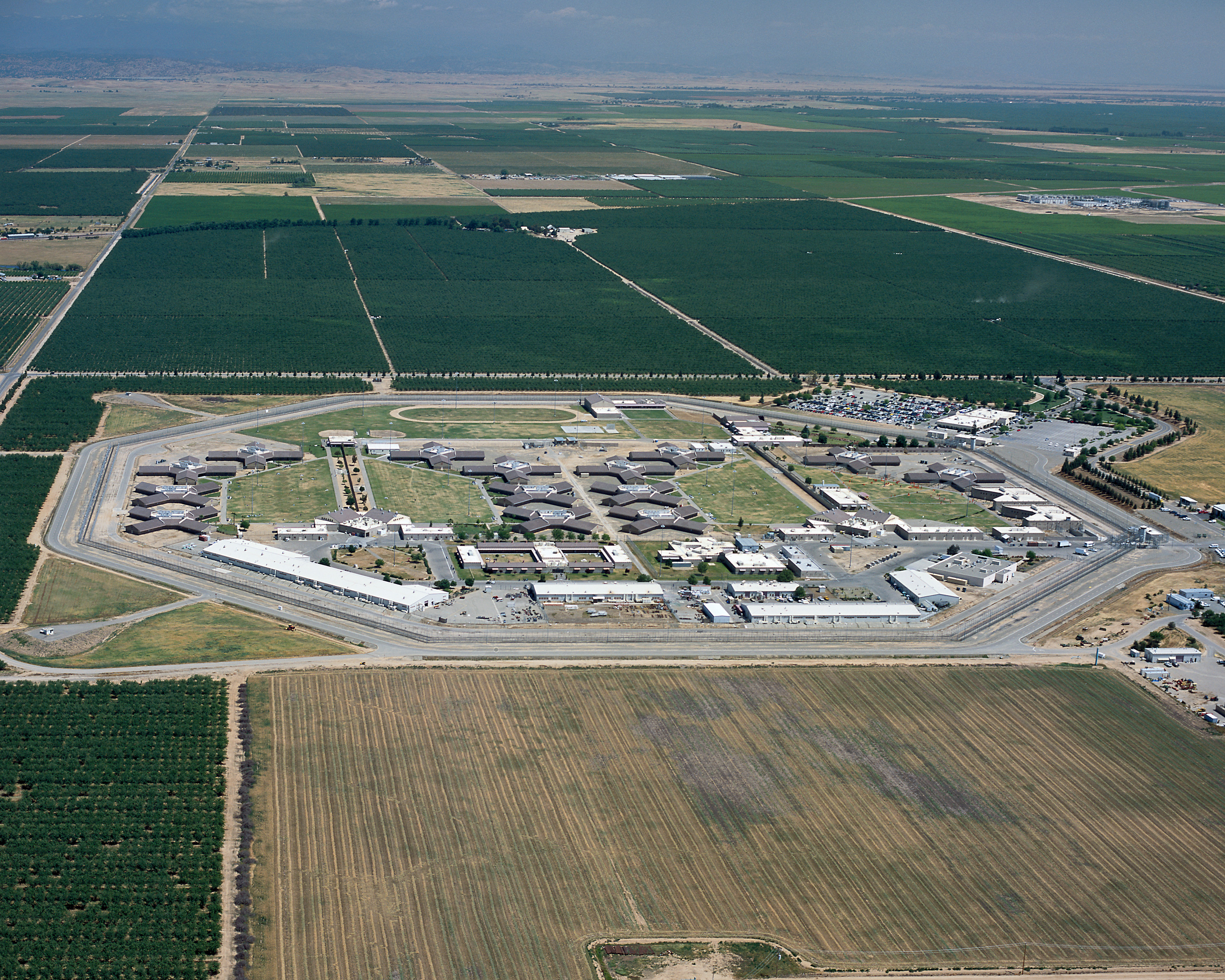 Transgender Mixing Leading to Pregnancies in Women's CA Prisons