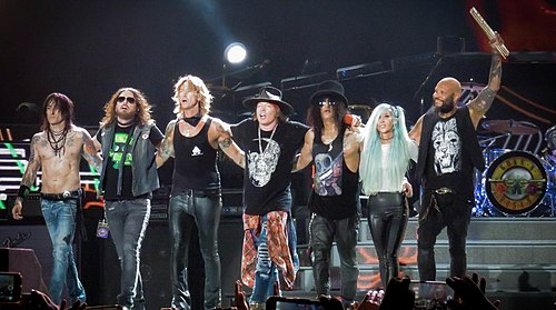 Not in This Lifetime... Tour - Wikipedia