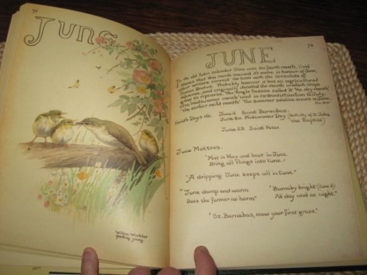 Country Diary Of An Edwardian Lady   hubpages
