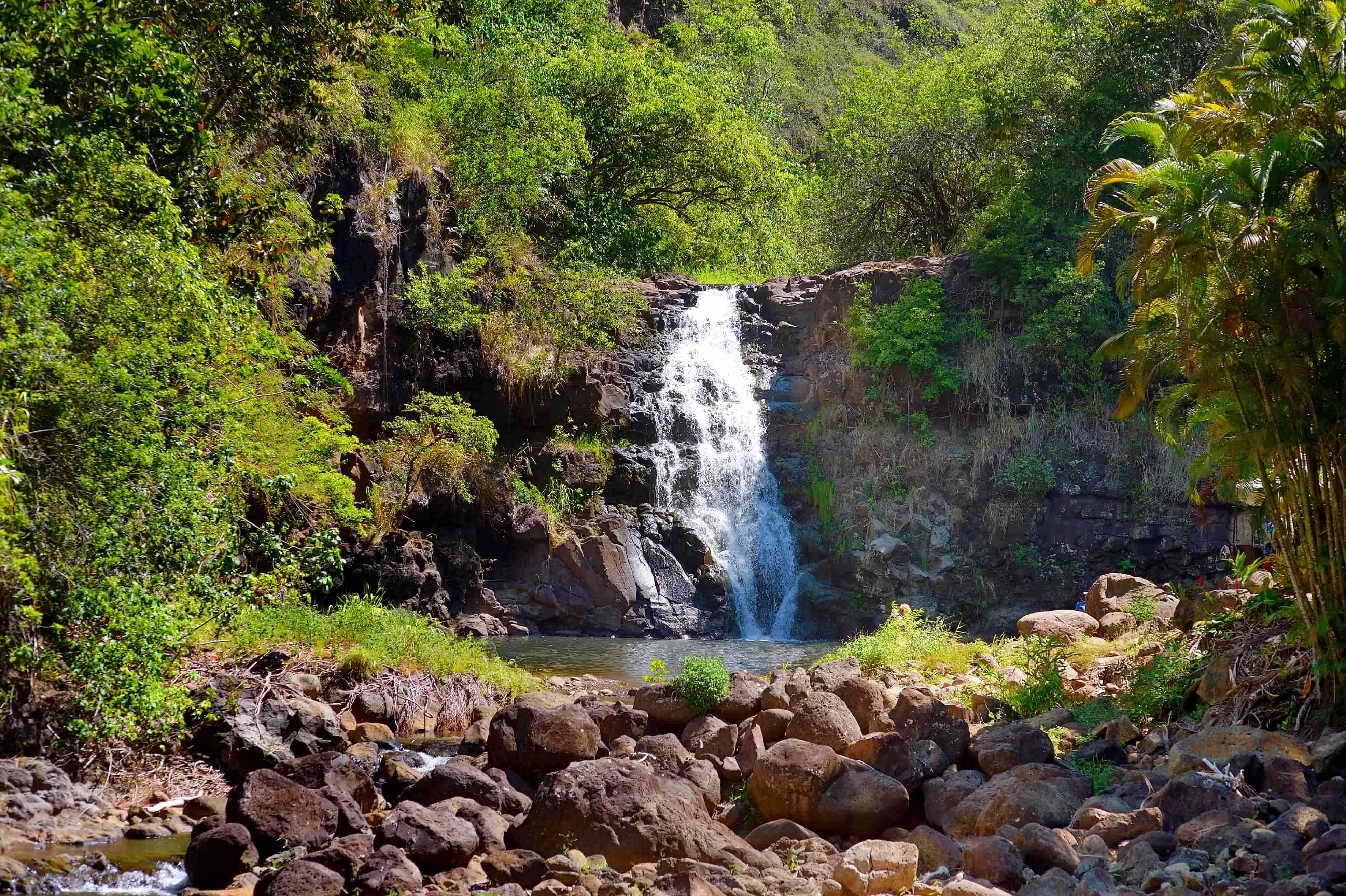 4 Best Waterfalls on Oahu | Hawaii Life Vacations