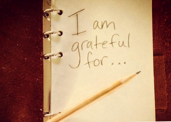 Best Gratitude Quotes + Picture Quotes